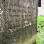Jane-Bewley-detail